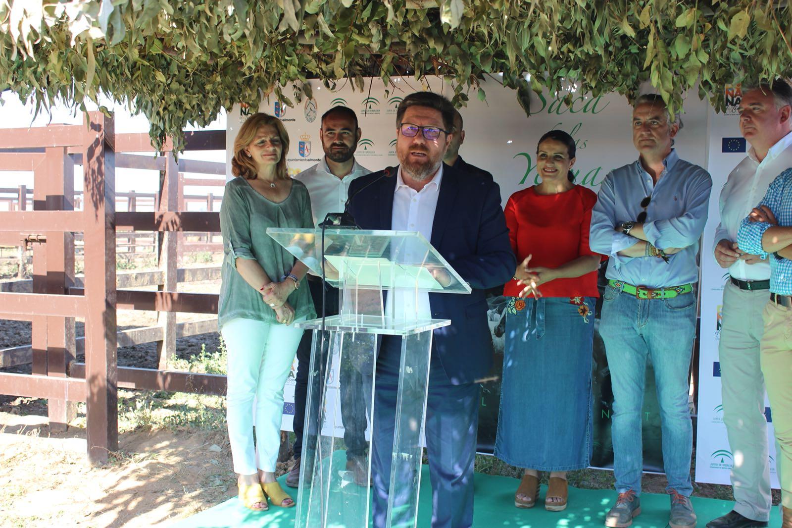 2018-06-27_Certamen Almonte3