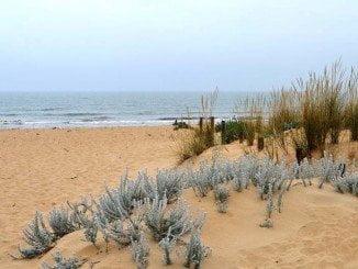 El Ayuntamiento de Huelva limpiará, de cara a la Semana Santa, la playa del Espigón, un bello paraje natural