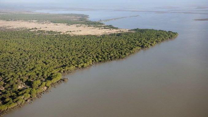 López advierte del grave impacto ambiental de la obra por su cercanía al parque de Doñana