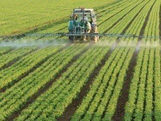 """COAG pide que se tomen medidas para dar seguridad al sector agrario tras el """"brexit"""""""