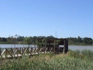 Las obras cercanas al Paraje Natural Estero Domingo Rubio carecen de autorización