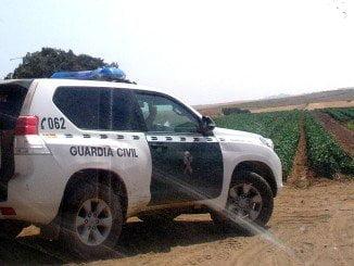 Fue localizada en una zona denominada Cabezo de Elvira, del término municipal de Bonares