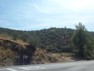 El atropello se ha producido en una carretera del término municipal de La Nava