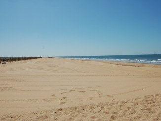 La playa contará también con una zona canina de 2.500 metros cuadrados
