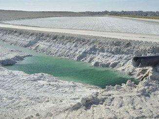 Defiende propuestas alternativas encaminadas a la descontaminación y reutilización de los residuos