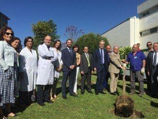 Coincidiendo con el Día Nacional del Donante, el consejero de Salud ha asistido al acto anual que organizan las asociaciones de pacientes trasplantados en Sevilla