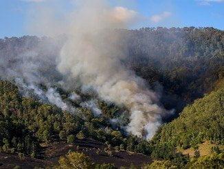 Las actuaciones de Endesa van encaminadas a evitar los incendios forestales durante el verano