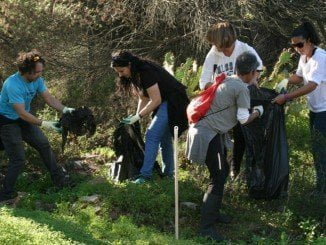 El sábado 4 se lleva a cabo la II Jornada de limpieza del pinar en Cartaya