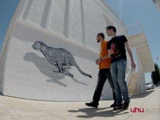 Pinturas en las fachadas del Campus del Carmen