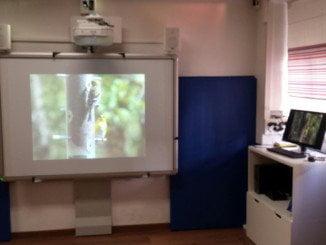 La pizarra digital es la principal herramienta del aula multisensorial