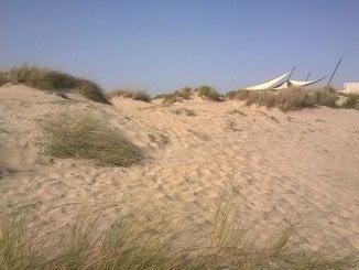 Dunas en la playa de La Antilla (Huelva), en la Costa de la Luz