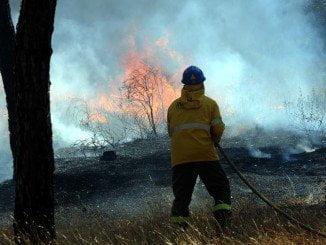 Los bomberos del INFOCA intentan sofocar el fuego desde las 14.50 horas