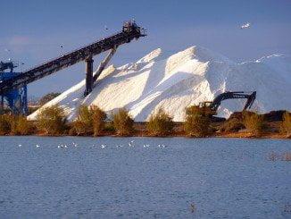 La sal llega a la planta de envase después de un proceso natural realizado en el Paraje Marismas del Odiel