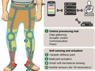Infografía del exoesqueleto