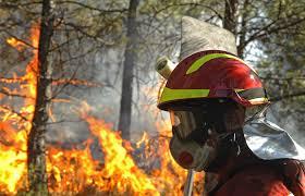 La prevención de incendios, la mejor arma contra el fuego