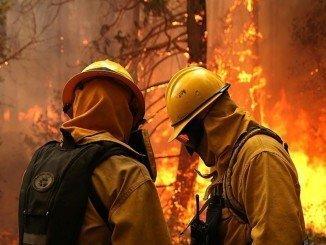 Los incendios forestales son muy frecuentes con las altas temperaturas y el coste a una explotación agraria puede ser muy elevado si no se toman precauciones