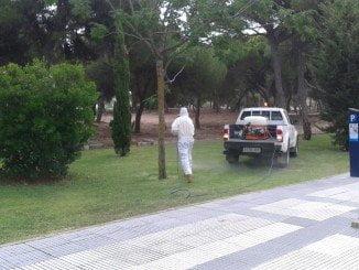 Según Diputación, se ha aumentado la dosis de tratamiento al máximo medioambiental permitido