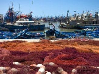 España aportará su experiencia tanto en la producción de pesca y acuicultura