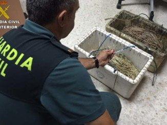 La Guardia Civil ha intervenido las artes de pesca ilegales para pescar en el Paraje Natural