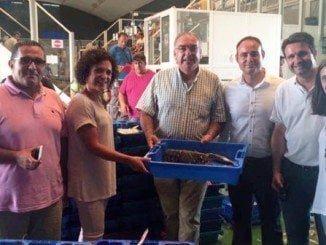 Visita de dirigentes socialistas a la Lonja de Isla Cristina