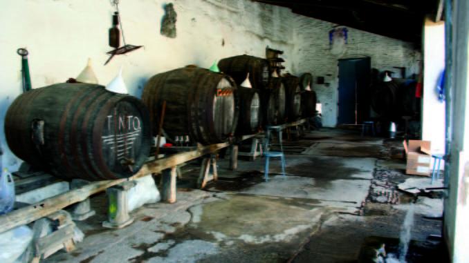 La Palma es un pueblo con mucha historia en la vendimia y en la elaboración del vino