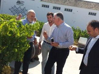 Romero y Pascual Hernández visitan el Centro de Interpretación del Vino y la Cooperativa del Condado