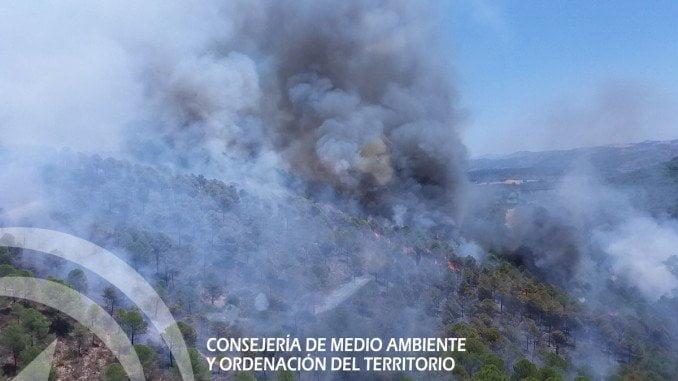 El fuego se ha declarado sobre las 14.25 horas