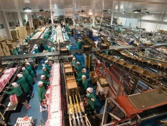 La cooperativa ha creado 41 empleos fijos