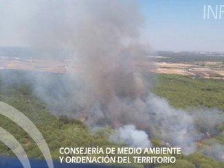 Imagen del incendio en el término municipal de Almonte