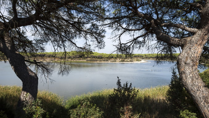 Laguna del Portil, en El Rompido