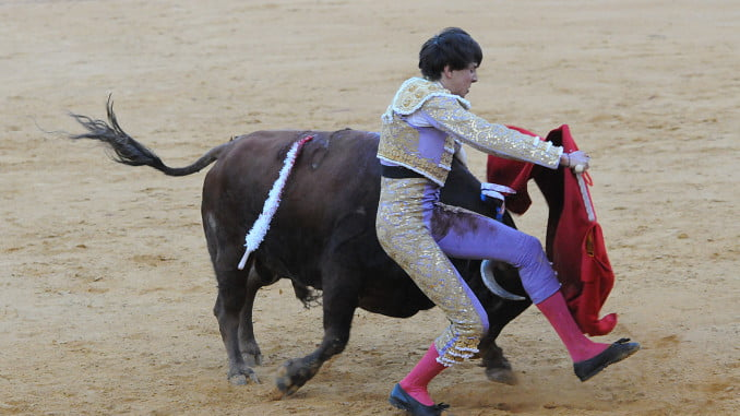 Roca Rey se llevó un susto por abusar del toreo entre pitones y ahogando la embestida de los toros.
