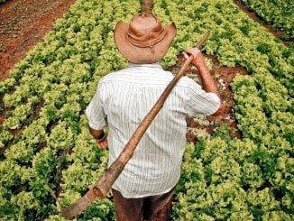 Asaja cree que los presupuestos de la Junta para agricultura llevan bajando 9 años consecutivos