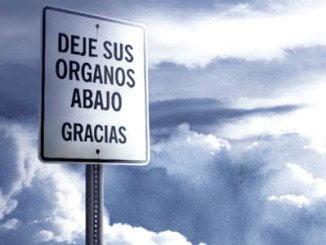 Andalucía bate récord histórico de autorización para la donación de órganos, ya que el 88% de las familias dice sí a la donación