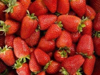 Huelva exporta más del 93% de los frutos rojos de Andalucía