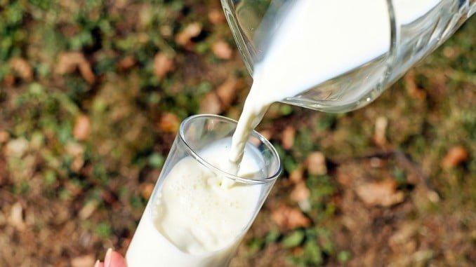 UPA asegura que a Francia le sobra leche, mientras que España es deficitaria