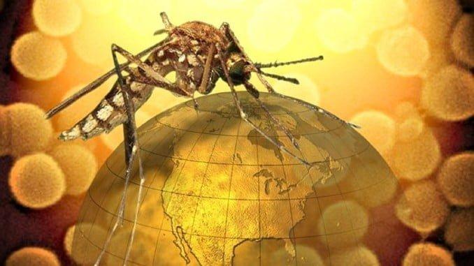 La junta activa el protocolo preventivo del virus del Nilo, tras la visita a Sevilla y Huelva del francés que lo padeció