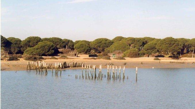 Doñana albergará el almacén de gas natural