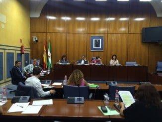 Fiscal ha abogado por la gestión sostenible de los parques naturales en el Parlamento andaluz hoy