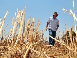 El objetivo es formar a los agricultores y ganaderos en las nuevas tecnologías