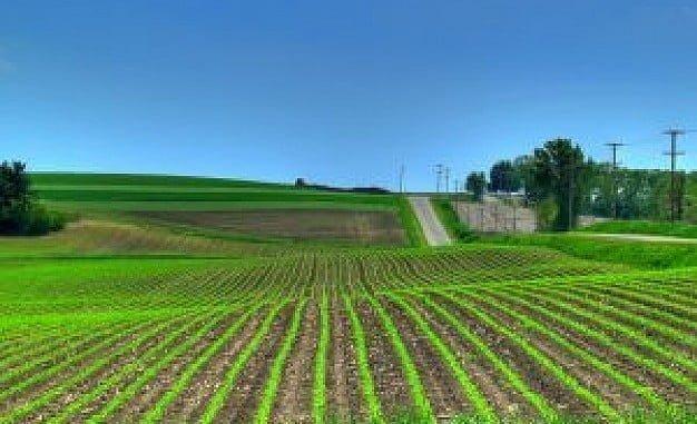 Los agricultores han tenido dificultades para  tramitar las ayudas de la PAC por fallos en el programa informático de la Junta