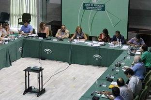La consejera de Agricultura, Pesca y Desarrollo Rural, Carmen Ortiz, presidió en Sevilla la reunión del Consejo Andaluz de la Producción Ecológica (CAPE)