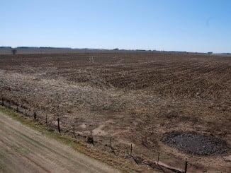 Campos secos por la climatología extrema de este verano