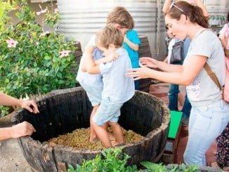 La iniciativa contempla actividades para descubrir la cultura, la gastronomía y el vino