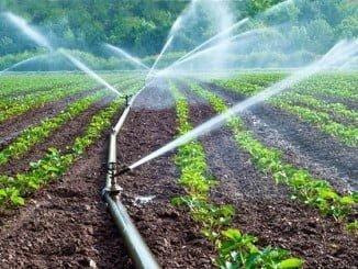 Las escasas precipitaciones hace que Andalucía requiera agua de riego