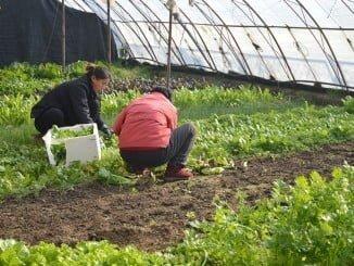 El medio rural debe ser un lugar de oportunidades para el desarrollo profesional de la mujer