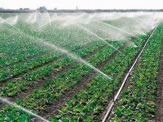 Las reuniones pretenden trasladar la importancia de la ampliación de superficie agrícola de regadío