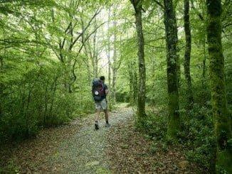 La naturaleza y los destinos rurales, cada vez mas presentes entre los españoles para viajar