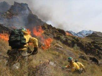 La importancia de prevenir incendios forestales tiene que calar desde el colegio