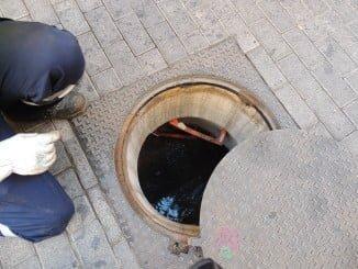 El Ayuntamiento de Huelva realiza en la ciudad un control de plagas.