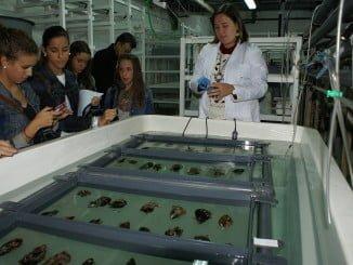 Estudiantes en el Centro Aguas del Pino de El rompido